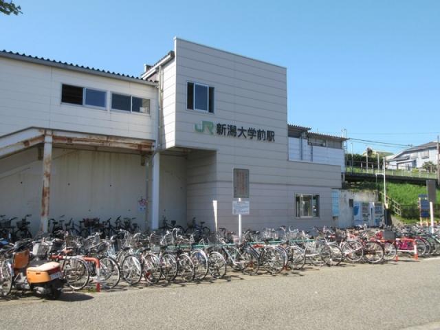 JR新潟大学前駅 徒歩約5分(約400m)